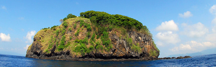 diving bali Padang Bai остров Tepekong тепеконг