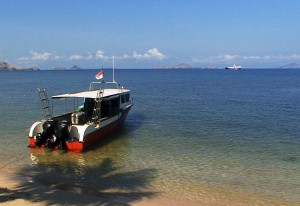 speed boat diving komodo bali